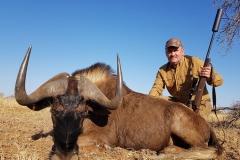 Black-Wildebeest-15