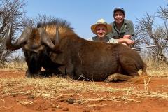 Black-Wildebeest-21