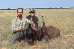 Black-Wildebeest-8