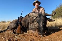 Blue-Wildebeest-38