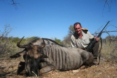 Blue-Wildebeest-JWK-Safaris-1