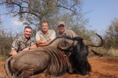 Blue-Wildebeest-JWK-Safaris-15