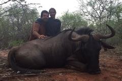 Blue-Wildebeest-JWK-Safaris-19