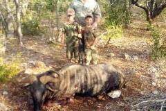 Blue-Wildebeest-JWK-Safaris-21