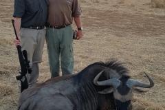 Blue-Wildebeest-JWK-Safaris-22