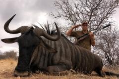 Blue-Wildebeest-JWK-Safaris-29