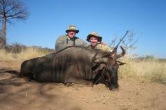 Blue-Wildebeest-JWK-Safaris-3