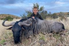 Blue-Wildebeest-JWK-Safaris-33
