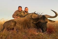 Blue-Wildebeest-JWK-Safaris-34