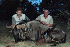 Blue-Wildebeest-JWK-Safaris-8