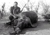 Buffalo-65