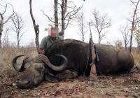 buffalo-hunting-08