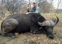 buffalo-hunting-14