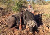 buffalo-hunting-16
