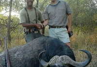buffalo-hunting-19