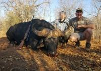 buffalo-hunting-24