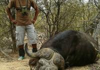 buffalo-hunting-33