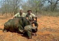 buffalo-hunting-42