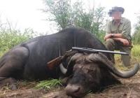 buffalo-hunting-49