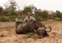 buffalo-hunting-61