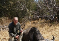 buffalo-hunting-63