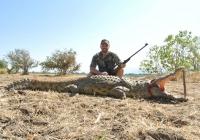 Crocodile-21