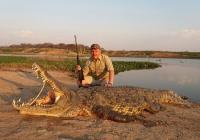 Crocodile-31