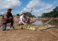 Crocodile-36