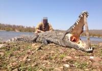 crocodile-hunting-03