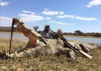 crocodile-hunting-13