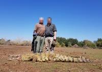 crocodile-hunting-33