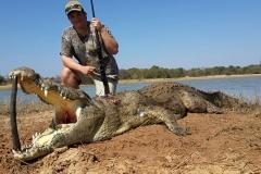 Crocodile-15