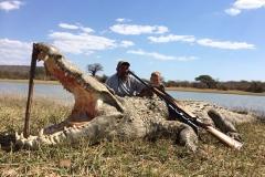 Crocodile-19