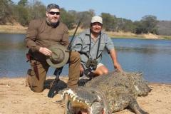 Crocodile-26