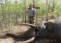 Elephant-65