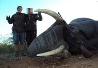 elephant-hunting-02