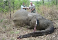 elephant-hunting-03
