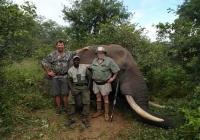elephant-hunting-14