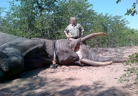 elephant-hunting-22
