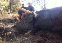 elephant-hunting-24