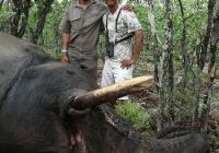 elephant-hunting-32
