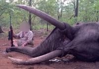 elephant-hunting-33