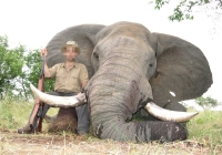 elephant-hunting-44
