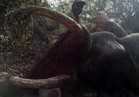 elephant-hunting-46