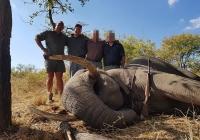 elephant-hunting-56