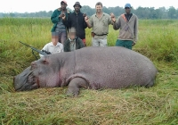 hippo-hunting-21