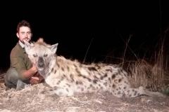 Hyena-17