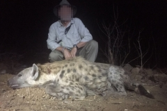 Hyena-19