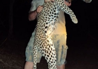 leopard-hunting-03