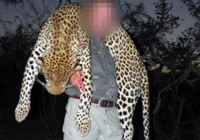 leopard-hunting-06